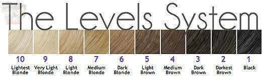 level-bleaching-rambut